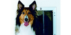 Pet Doors by Apple Door Systems image